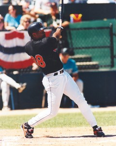 Albert Belle Chicago White Sox / Orioles Photo