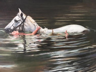 "FRED SKLENAR:""Swimming With A Friend"" Oil On Canvas Signed Framed Horse Stunning"