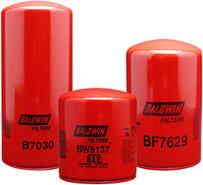 Baldwin BK6619 Service Kit for International