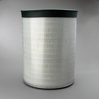 Donaldson P182038 Air Filter