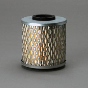 Panel Donaldson P606555 Air Filter