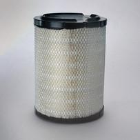 Donaldson P527484 Air Filter