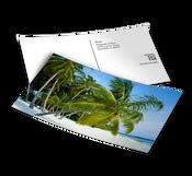 1000 Postcards (4x6)