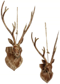 Deer Head - Set of 2 Assorted