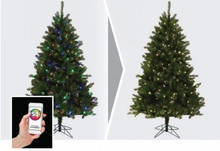 "6' 6"" Versaline, Pre-Lit, 3-Channel, Color-Flip Medium Tree"
