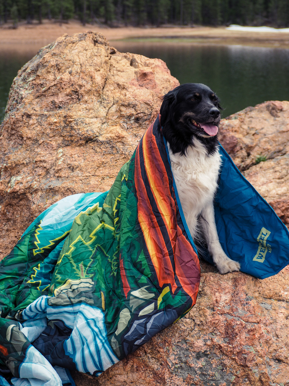 Dog outside on rocks in front of a lake wearing a Wenzel Alpine Camp Quilt around it