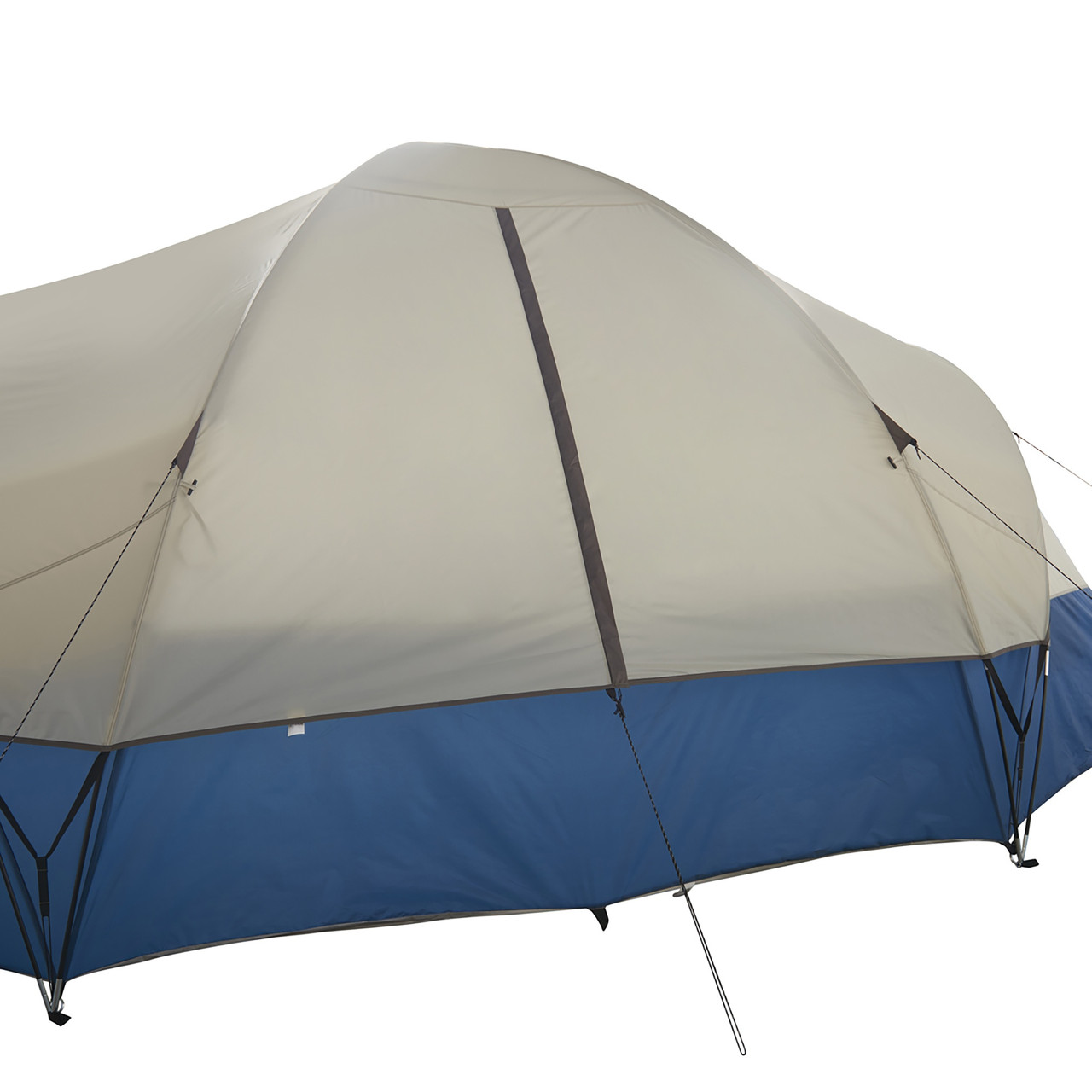 Wenzel Pinyon 10 Person Dome Tent, blue/white, showing rear window, closed