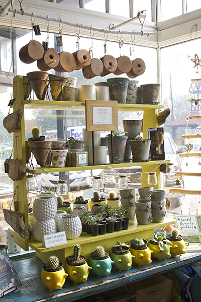 7-avondale-displays-succulents.jpg