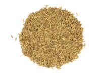 Cumin Seed (Organic) - 1 oz.