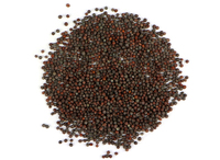 Brown Mustard Seed (Organic) - 1 oz.