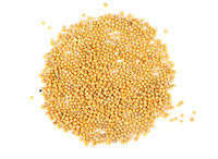 Yellow Mustard Seed (Organic) - 1 oz.