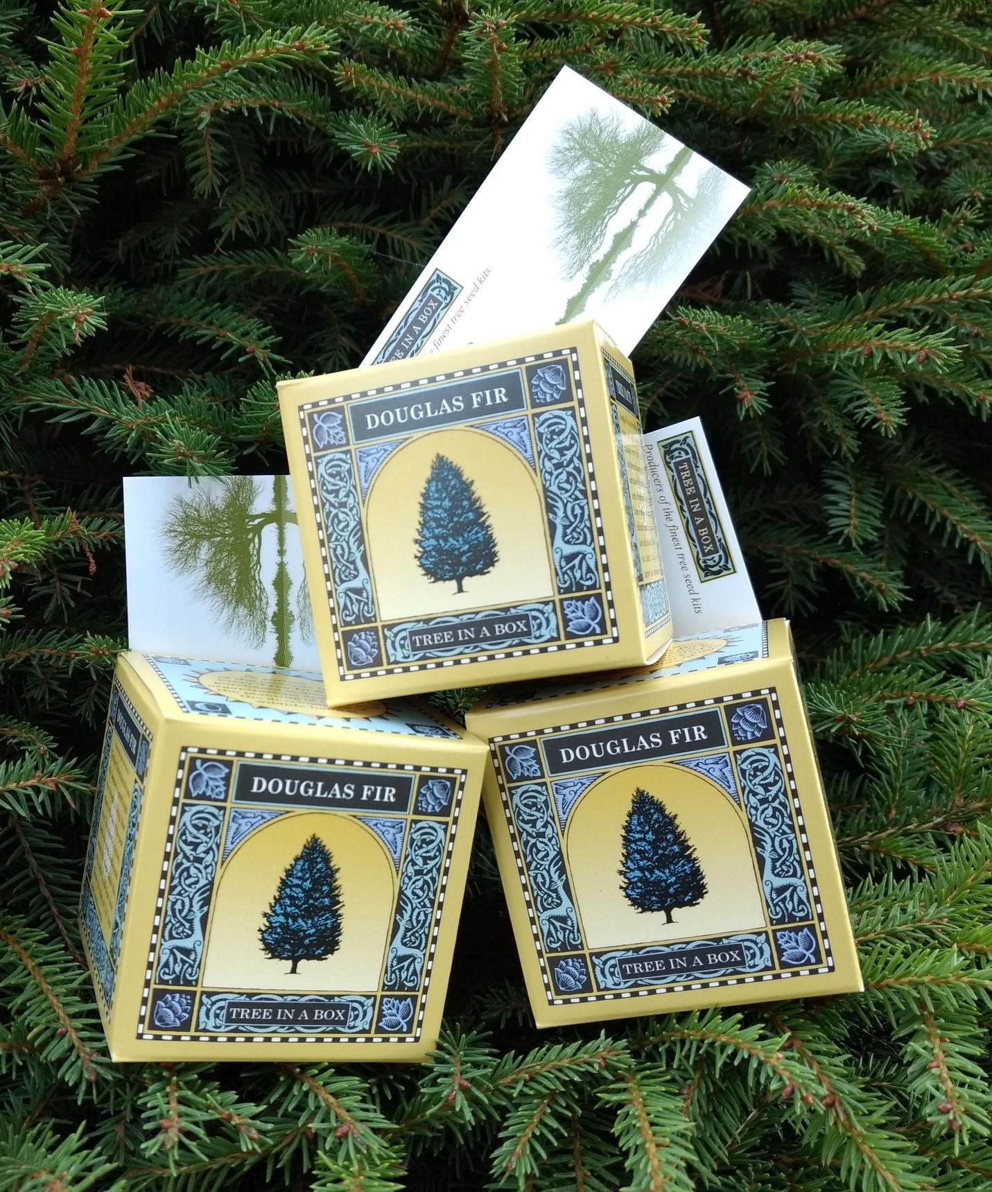 Corporate business card tree kits