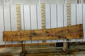 French White Oak Live Edge Wood Slab - FWO001- 144x21x1.125 - Side 1