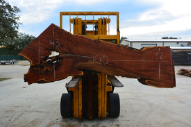 Mesquite  Live Edge Wood Slab - TM304 - 100x38x1.875 - Side 1