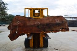 Mesquite Live Edge Wood Slab - TM306 - 104x35x2.5 - Side 1