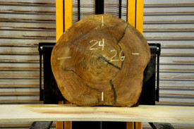 Sura Wood Live Edge Wood Slab - OH20377 - 26x24x2