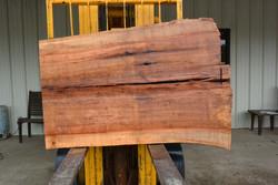 TX Pecan Live Edge Wood Slab - TXP0216 - 58x42x3 - Side 2