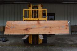 Ambrosia Live Edge Wood Slab - AM005 - 120x25x1.625 - side 1