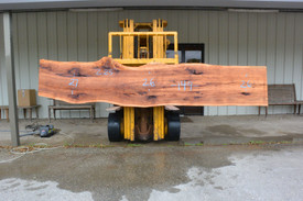 TX Pecan Live Edge Wood Slab - TXP0225 - side 1