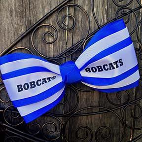 The Corinne Mascot- Byron Bobcats