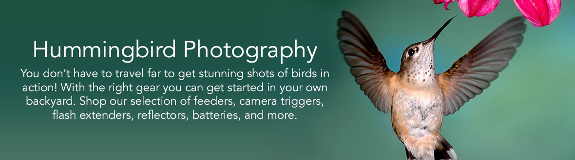 Hummingbird Photography | You don't have to travel far to get stunning shots of birds in action! With the right gear you can get started in your own backyard. Shop our selection of feeders, camera triggers, flash extenders, reflectors, batteries, and more.