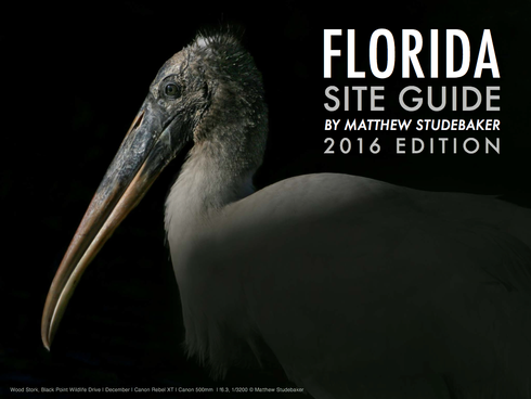 Florida Site Guide eBook by Matthew Studebaker - eBook Cover