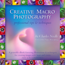 Creative Macro Photography eBook by Charles Needle