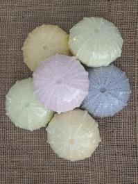 Sea Urchin Hand Soap