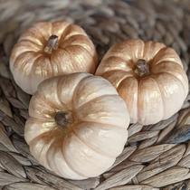 Extra Large Pumpkin Soap