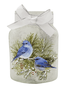 Winter Blue Bird Frosted Jar Nightlight