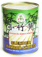 11340BAMBOO SHOOT SLENDERBAMBOO GARDEN 24/28 OZ