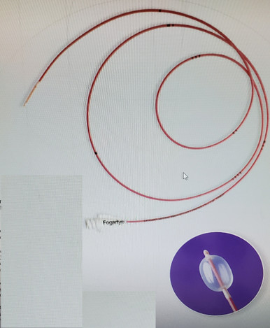 Edwards Lifesciences, 12TLW406F, Fogarty Over-the-wire thru-lumen embolectomy catheter 40 cm 6Fr, price of each