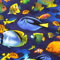 Tropical Fish on Navy Fabric