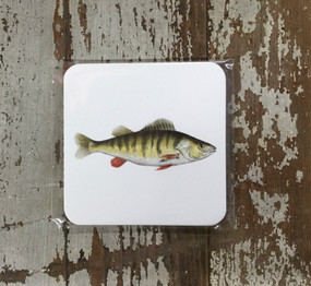 Paper Coasters - Bass