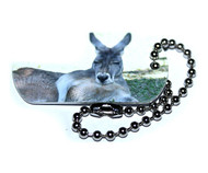 Kangaroo and Wallaby Tags