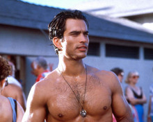 Johnathon Schaech in How to Make an American Quilt Poster and Photo
