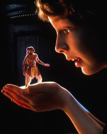 Hal Scardino in The Indian in the Cupboard Poster and Photo