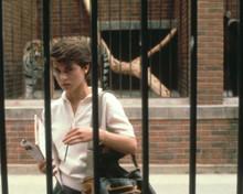 Nastassja Kinski in Cat People (1982) Poster and Photo