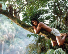 Jason Scott Lee in Rudyard Kipling's Jungle Book aka The Jungle Book (1994) Poster and Photo