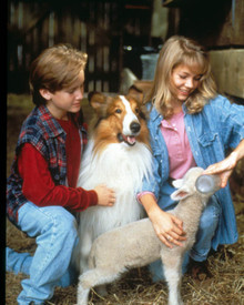 Tom Guiry & Lassie in Lassie Poster and Photo