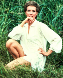 Julie Andrews in 10 Poster and Photo