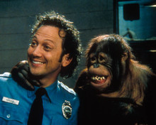 Rob Schneider in The Animal Poster and Photo