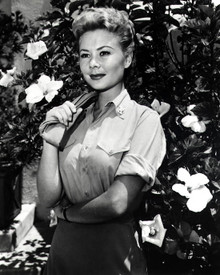Mitzi Gaynor Photograph and Poster - 1020944 Poster and Photo
