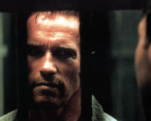 Arnold Schwarzenegger in Collateral Damage Poster and Photo
