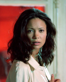 Thandie Newton in The Truth About Charlie Poster and Photo