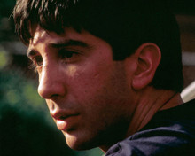 David Schwimmer in The Pallbearer Poster and Photo
