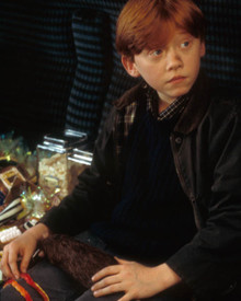 Rupert Grint in Harry Potter and the Philosopher's Stone aka Harry Potter and the Sorcerer's Stone aka Harry Potter a l'ecole des sorciers Poster and Photo