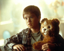 Haley Joel Osment Photograph and Poster - 1021770 Poster and Photo
