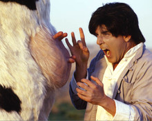 Steve Oedekerk in Kung Pow: Enter the Fist Poster and Photo