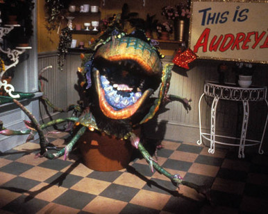 Little Shop of Horrors Poster and Photo